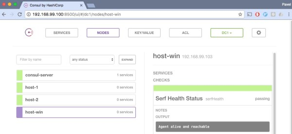 Consul cluster with windows host