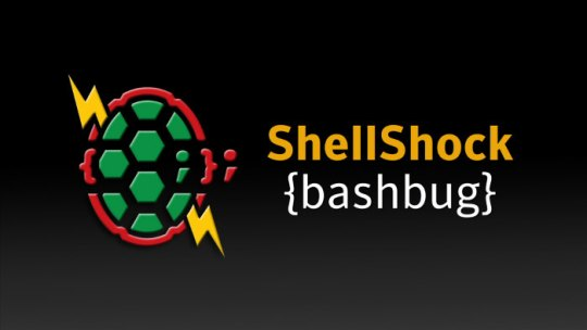 Shellshock: The Shock Heard Around the World Wide Web
