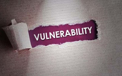 Software Vulnerabilities, Assessment Tools, and Management