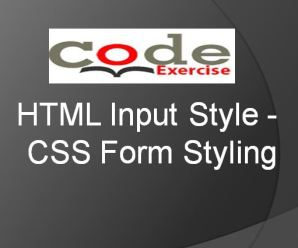 HTML Input Style – CSS Form Styling