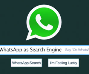 Use WhatsApp As A Search Engine