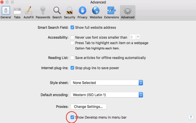 Safari - show develop option in the menu ba
