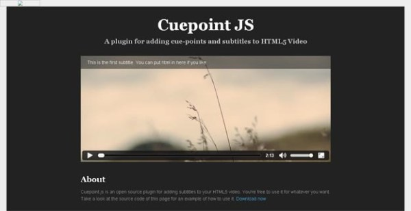 Best HTML5 Video Players and Tools for Developers   Code Geekz