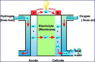 A diagram showing how a fuel cell works.