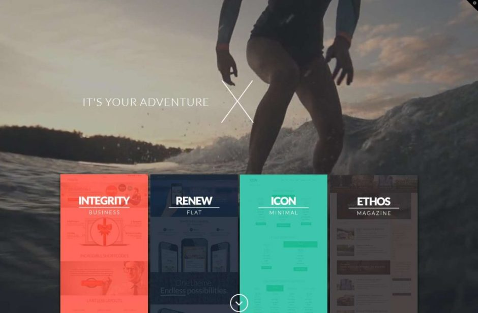 Integrity X WordPress Theme-compressed