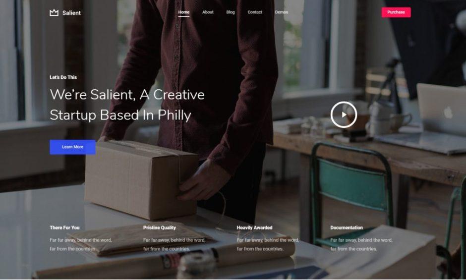 Salient Startup-compressed