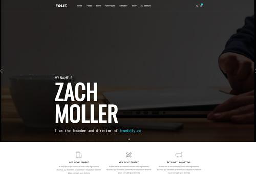 Folie Freelancer WordPress Theme