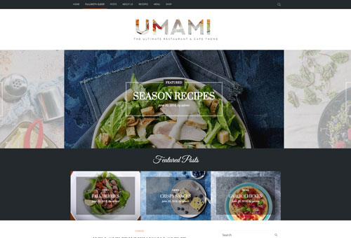 Picante Blog Full WordPress Theme