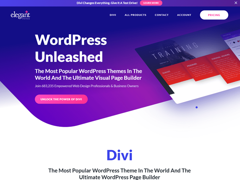 Divi: Best WordPress Theme of 2021