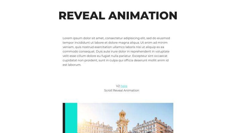 CSS Reveal Animation