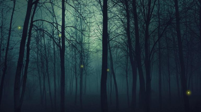 CSS Fireflies