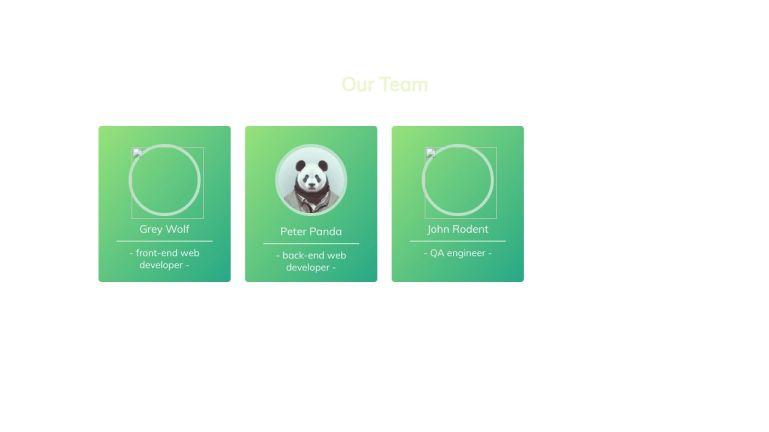 CSS Flip Cards