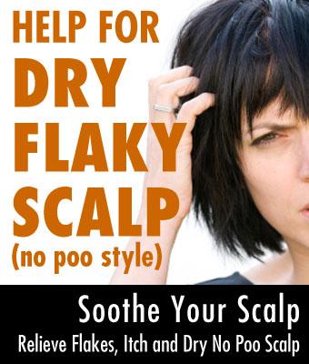 No Poo Dry Scalp Help