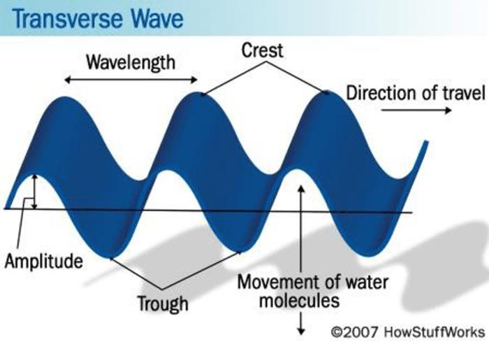 transverse-wave