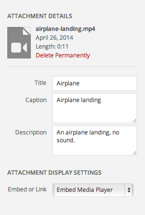 video-details-and-display-settings.png