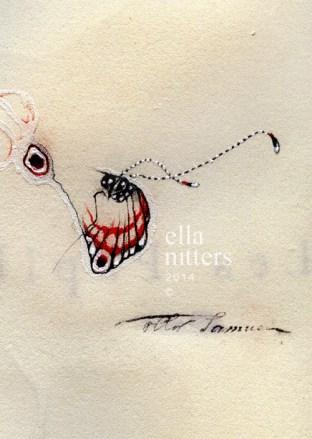 papillon fantôme 3