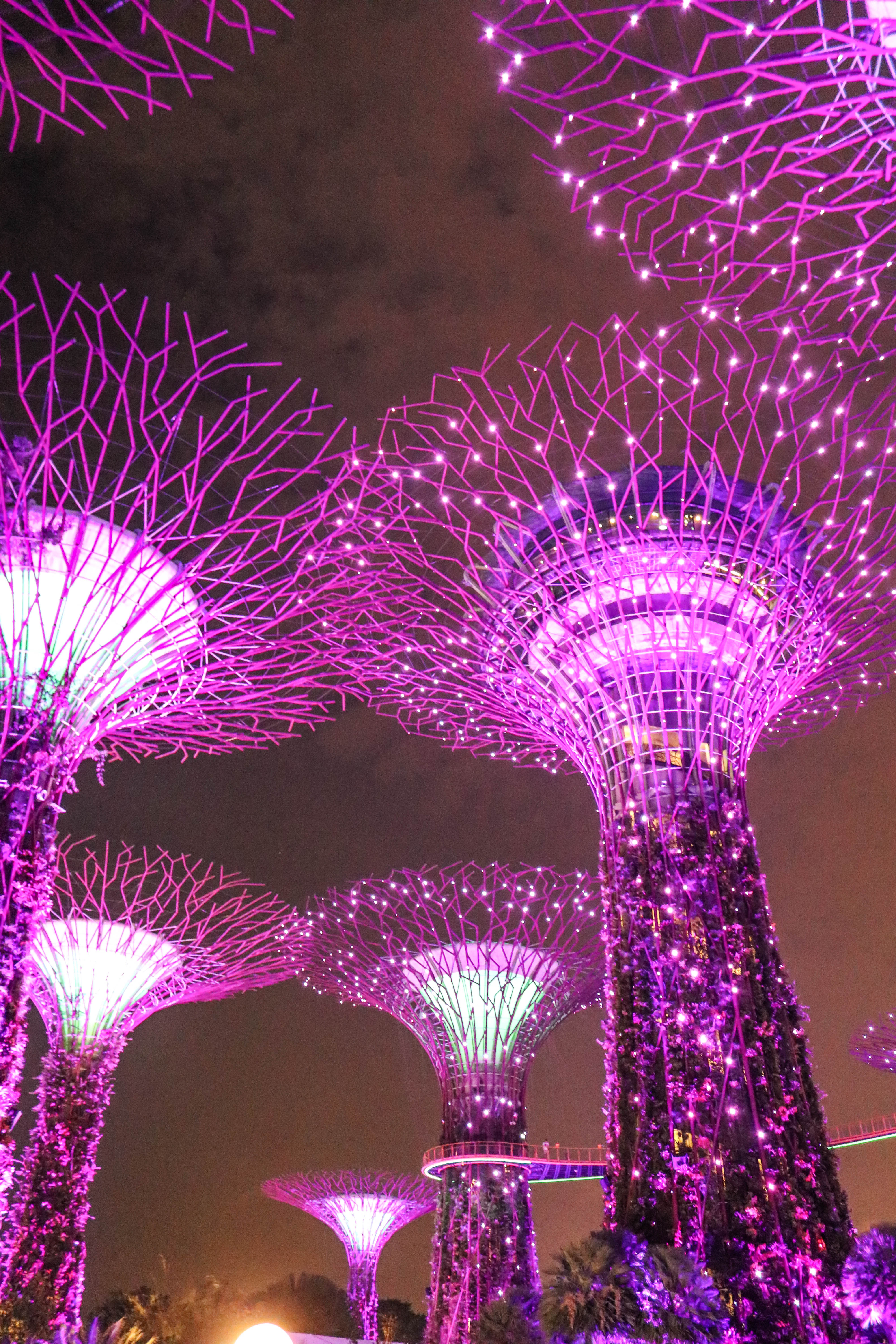 My Singapore Photo Itinerary - Codie Zofia