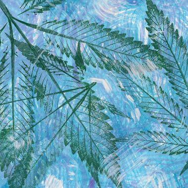 Marihuana México Legalización Salud