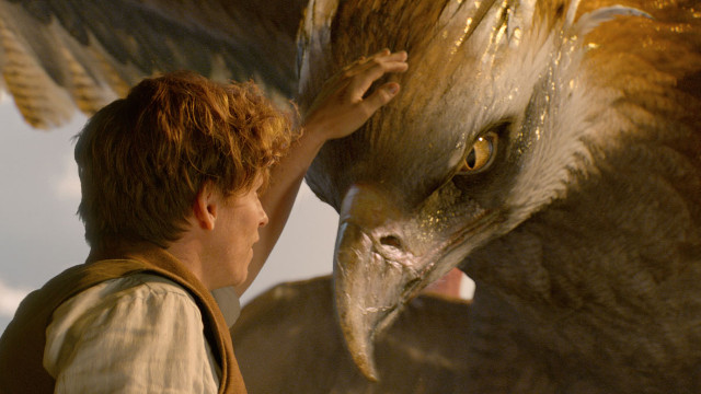 fantastic-beasts-and-where-to-find-them-14