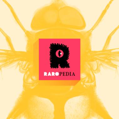 Eristalis gatesi, la mosca nombrada en honor a Bill Gates