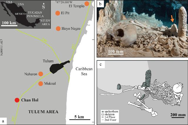 Esqueleto encontrado en la cueva de Chan Hol, Quintana Roo