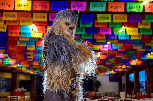 Chewbacca visitó la ciudad de México para promocionar Solo