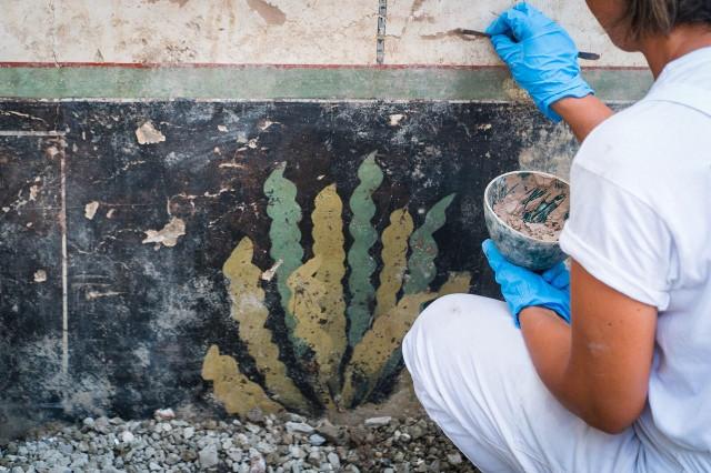 Motivos vegetales sobre fondo negro Foto: Cesare Abbate / Parco Archeologico di Pompei