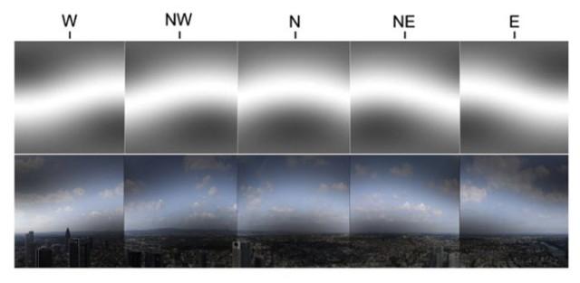 Así es como un pájaro puede ver los campos magnéticos. ( Biofísica Teórica y Computacional / UofI )