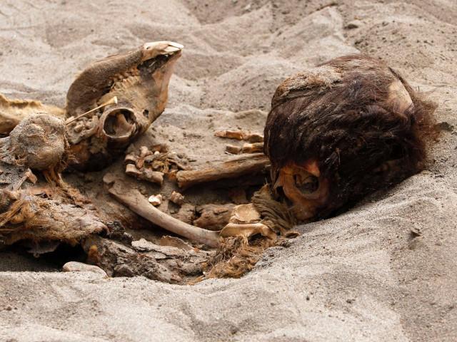 Imagen sacrificio ritual de niños más grande de la historia