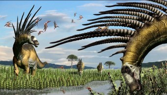 Dinosaurio-Argentina-Espinas