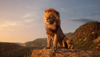 Rey León, Lion King, Posters, Película