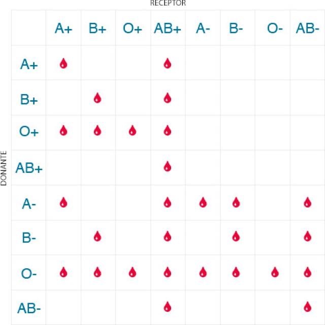 Tabla que muestra la compatibilidad entre tipos sanguíneos