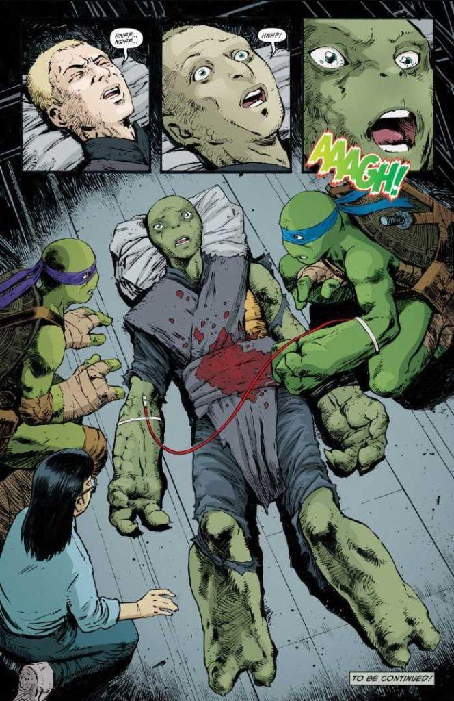 Tortugas Ninja, Jennika, Mujer, Comic