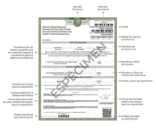 Ejemplo de documento de cédula profesional en formato digital