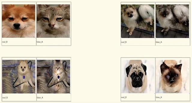 Perros a gatos gatos a perros Inteligencia Atificial