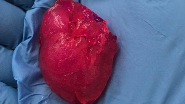 Corazón Impreso 3D