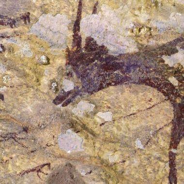 Pinturas rupestres más antiguas Indonesia