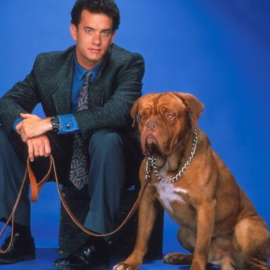Tom Hanks con un perro al lado
