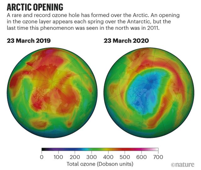 Ozono Ártico
