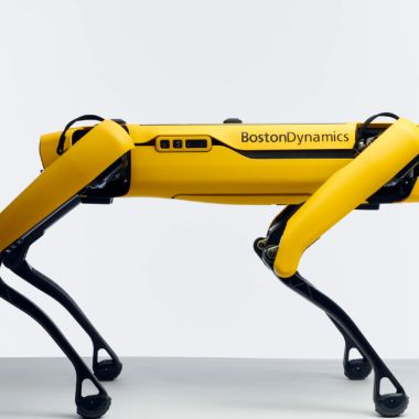 Boston Dynamics Spot Perro Robot