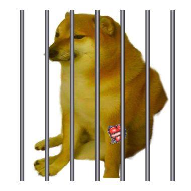 Memes Ilegales Reforma