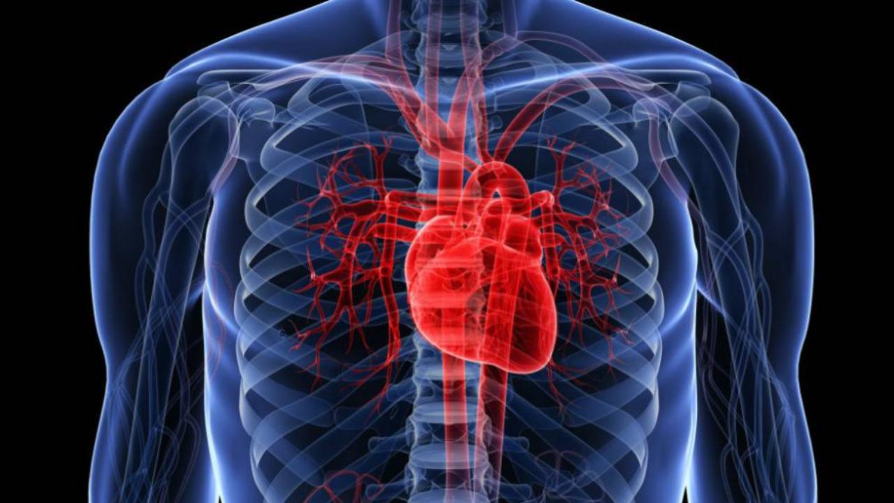 Covid-19 causa enfermedades cardiacas en pacientes recuperados