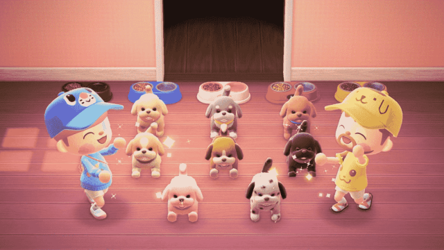 Animal Crossing: ¡Perritos llegan a New Horizons en forma de peluches!