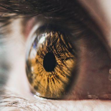 Investigadores trabajan en un implante que podría restaurarles la vista a personas ciegas