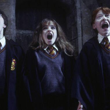 Warner elige al nuevo responsable de todo lo relacionado con Harry Potter