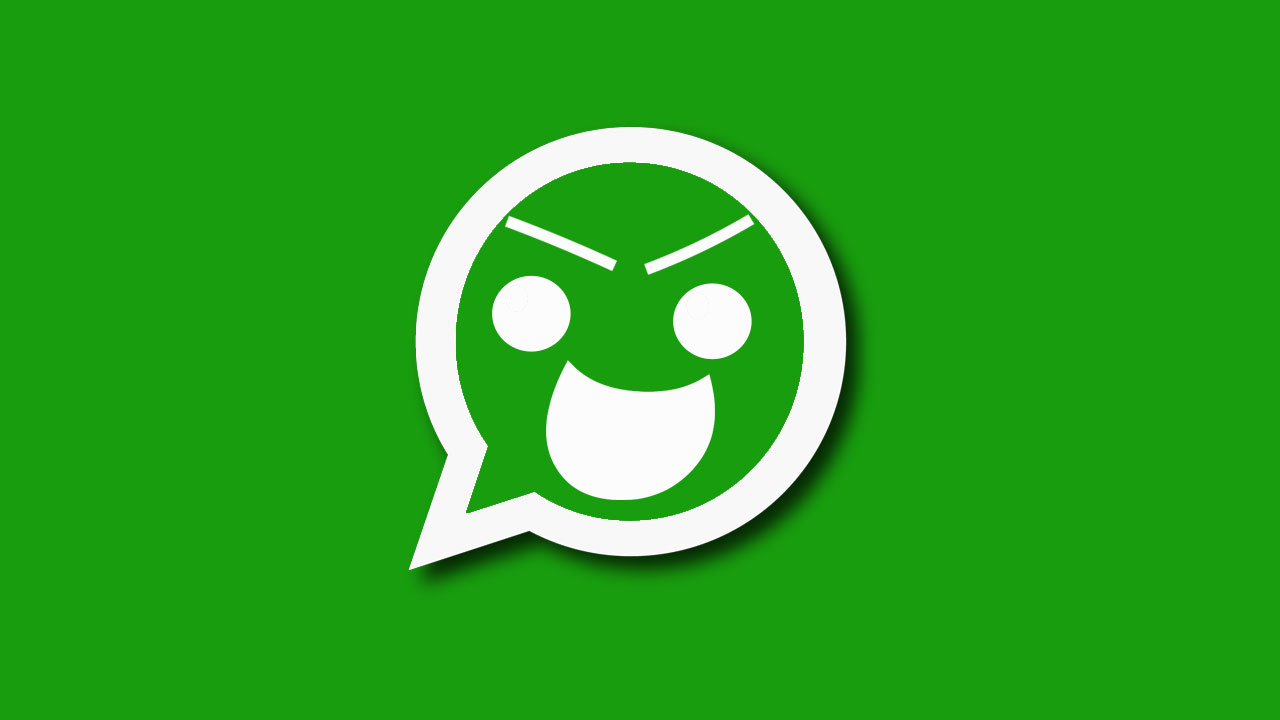 WhatsApp Para qué usa tus datos