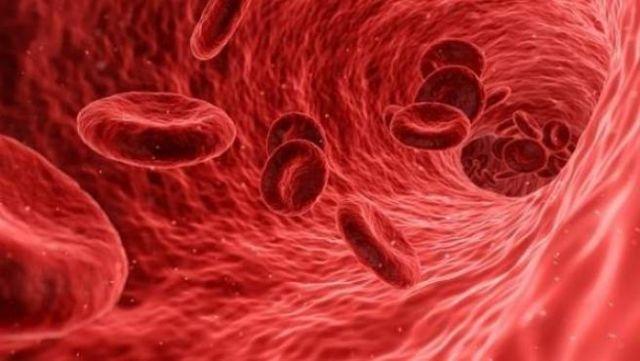 oxígeno en la sangre