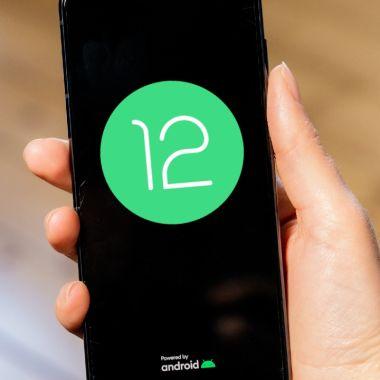 Android 12 llegó con versión para desarrolladores