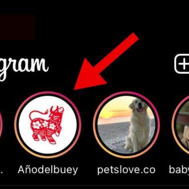 Año del buey en Instagram