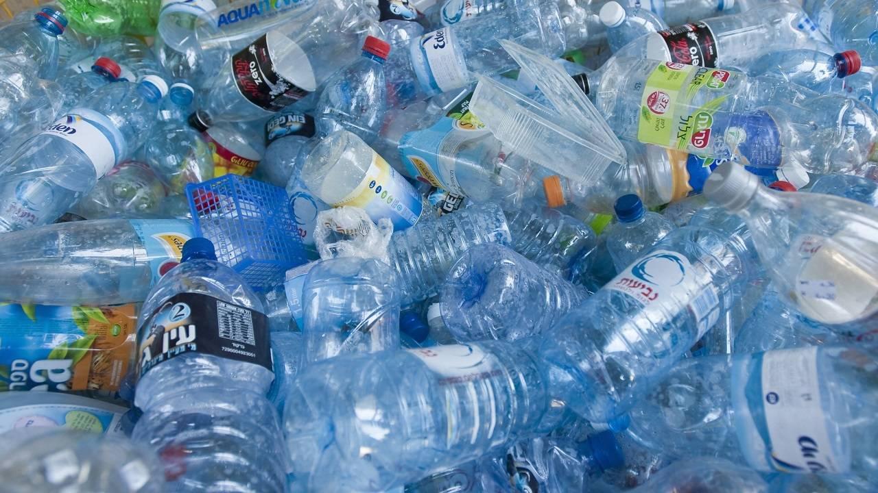 Plástico Contaminación Ftalato Penes Pequeños